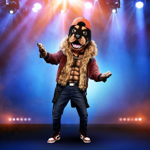 Rottweiler Masked Singer Revealed!