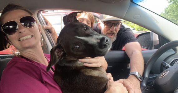 Couple Pursues Suspect On A 50-Mile Chase To Find Their Stolen Dog