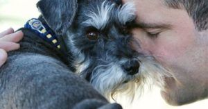 Dedicated Dog Dad Is Cashing Out His 401K To Pay For Dog's Open Heart Surgery