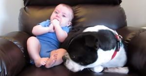This Baby's 'Unsettling' Actions Sent This Poor Pup Running