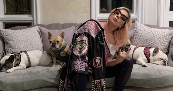 Lady Gaga Offers $500,000 Reward After Thieves Shoot Her Dogwalker And Snatch 2 Of Her Pups