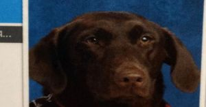 Service Dog May Be First Ever To Take Good School Picture