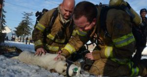 Firefighters Gifted Life-Saving Oxygen Masks For Dogs