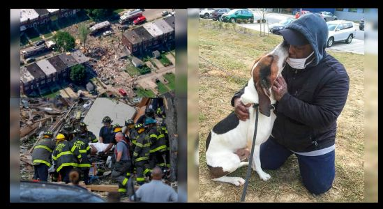 Man Who Survived Deadly Explosion Reunites With Dog After 4 Months In A Coma