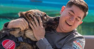 """Military """"Battle Buddies"""" Retired And Reunited With Their Best Friends"""