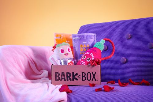 Share The Love With Your Furriest Foodie in February's BarkBox: DINNER DATES