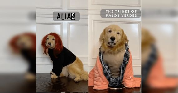 Jennifer Garner And Her Dog Recreated Iconic Roles And Won The Internet