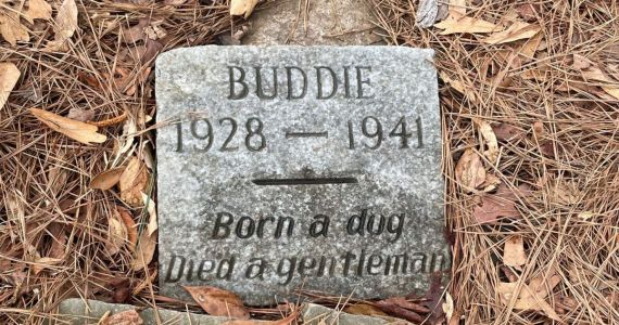 """80-Year-Old Gravestone Honors Dog Who """"Died A Gentleman"""""""