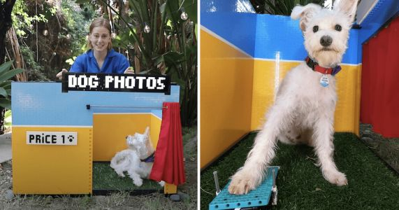 Three-Legged Dog Takes Control Of Tiny Selfie Booth