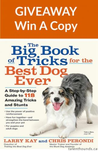 Giveaway of The Big Book of Tricks for the Best Dog Ever