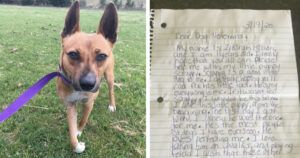Veterinarian Gets Heartfelt Note Begging Her To Save Dog's Life