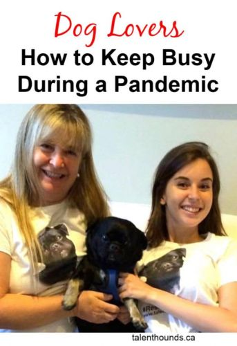 Dog Lovers- How to Keep Busy During a Pandemic