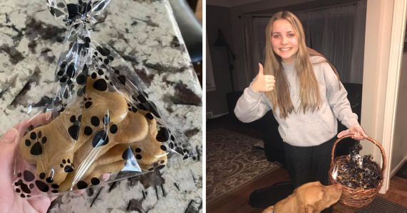 Teen's Dog Treat Business Booms In Rough Times