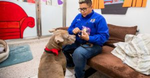 Woman Spends Valentine's Week In Kennel With Longterm Resident Pup