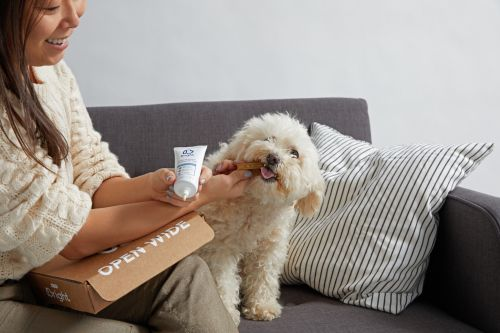 Why Bad Dog Breath Is A Huge Problem (And 8 Products To Keep Their Mouths Healthy)