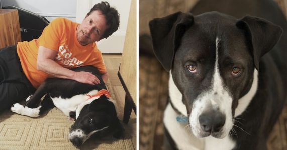 """Michael J. Fox's """"Wonder Dog"""" Passes Away After 12 Years Of Love & Support"""