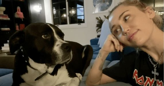 Miley Cyrus Mourns The Loss Of Her Pit Bull BFF With A Special Song