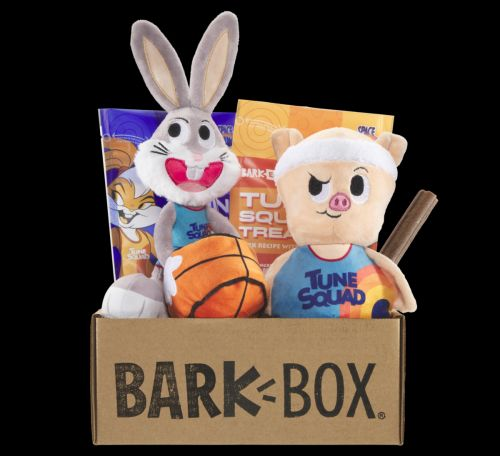 """Your Dog's The MVP On The Tune Squad In July's BarkBox: """"Space Jam: A New Legacy"""""""