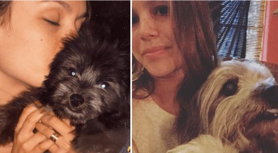 """Rachel Bilson Mourns The Loss Of Her """"First Baby"""" Poodle Mix"""