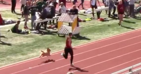 Dog Crashes Track Meet & Unofficially Wins The Race