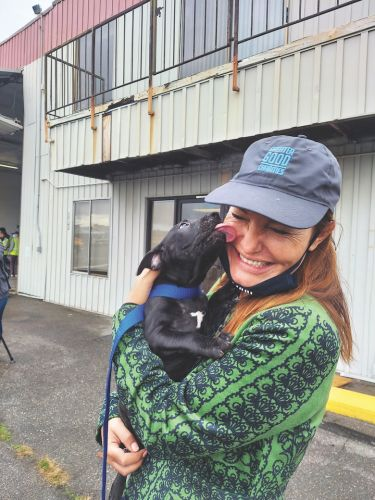 This Historic Pet Rescue Flight Brought Nearly 600 Animals to Seattle
