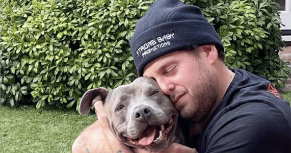 Jonah Hill Adopts Grateful Rescue Pit Bull Named Fig