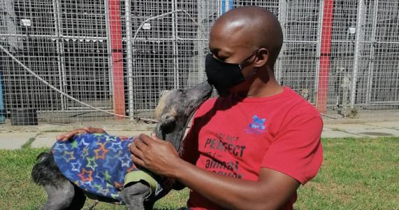 Severely Neglected Dog Finally Experiences Life Without Chains