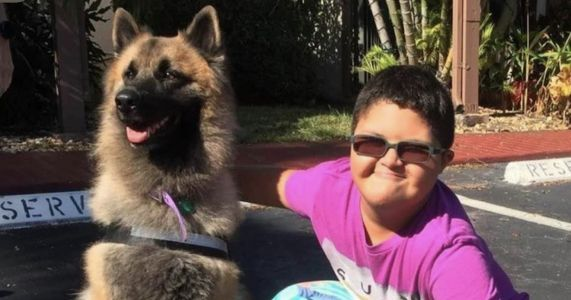 Shelter Pooch Who Saved A Lost Boy Is Up For A Hero Dog Award