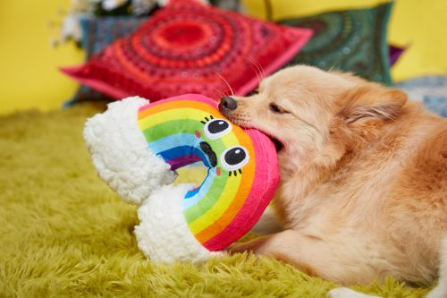 """Right On! The BarkBox """"Peace & Fluff"""" Collection Is The Best Thing Since Sliced Bread"""