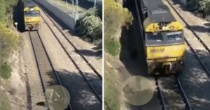 Experts Suspect That Man Faked Dog Train Tracks Rescue For Fame