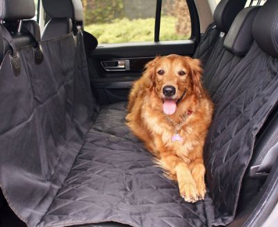 6 Of The Best Car Seat Covers For Dogs