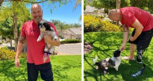 Double Amputee Shih Tzu Adopted By Dad With Prosthetic Leg