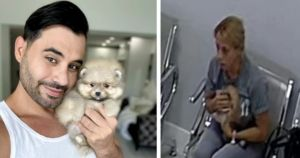 Puppy Stolen From Vet's Office Reunited With Cuban Singer