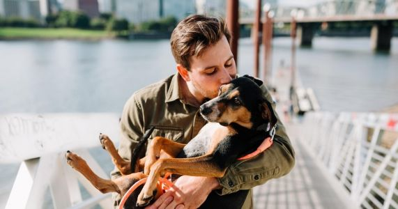 Verdict Is In - Here's The 1 Way To Help Eliminate Your Pup's Allergies