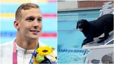 Caeleb Dressel Swims With His Dog Jane In Gold Medal-Worthy Video